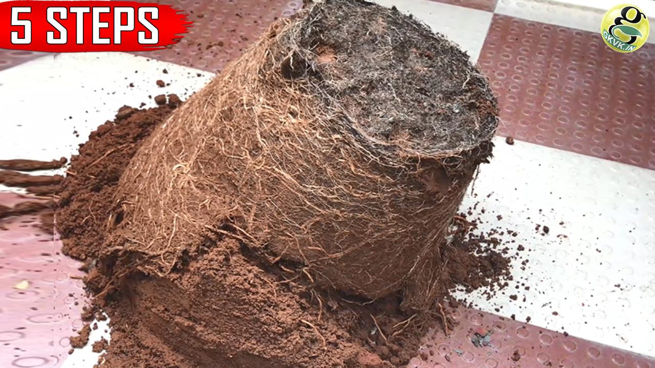 Revitalize Old Garden Soil – Rejuvenate unused potting soil – GKVKs
