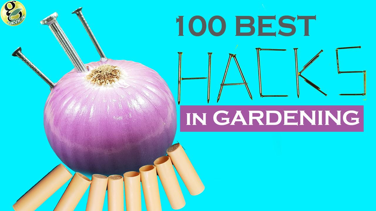 Best Gardening Tips and Tricks Video